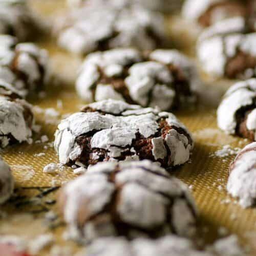 Closeup photo of Chocolate Crinkle Cookies