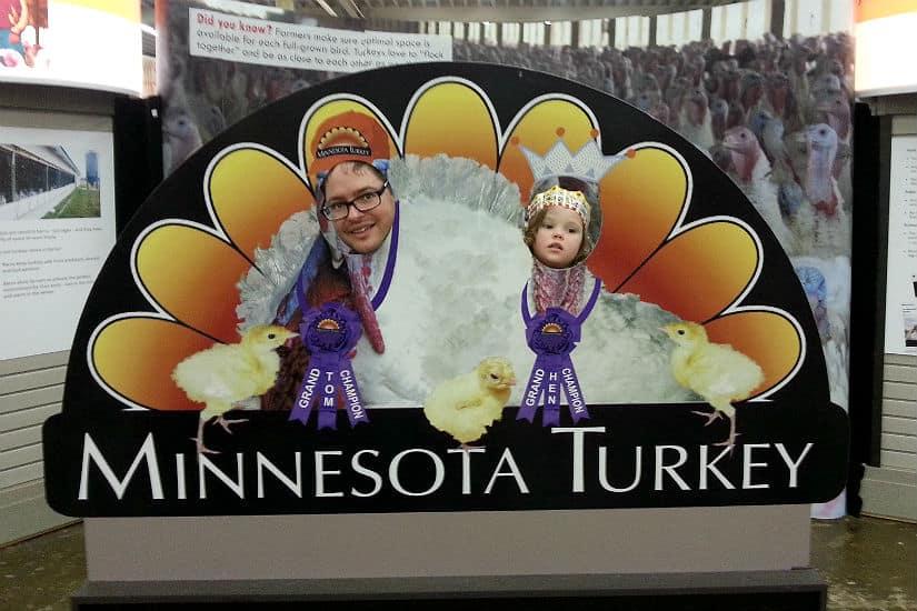 State fair turkey