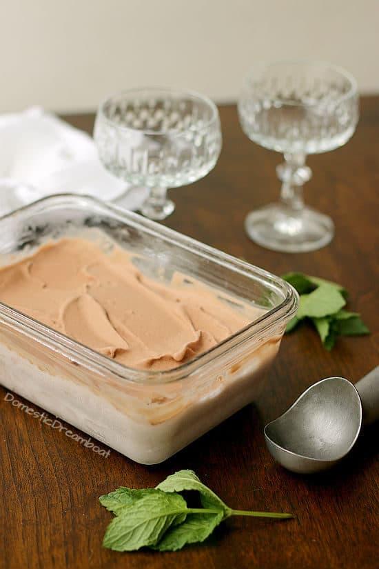 Dairy Free Chocolate Coconut Ice Cream